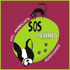 SOS Pelines protectora de animales