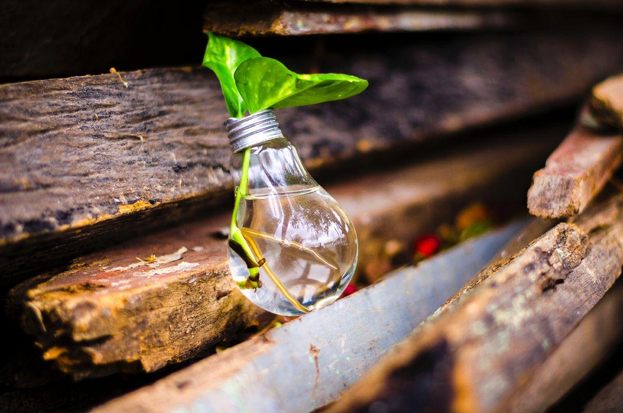 ONGs El Reto de la Innovación